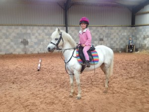 12h-lead-rein-or-pony-club-pony-51b64806d29c4